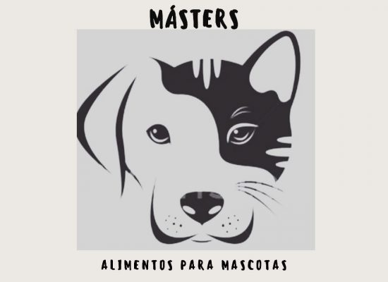 Masters Cabildo