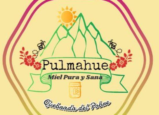 Miel Pulmahue