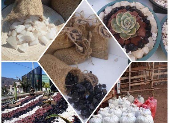 Tierra de hoja y decoración