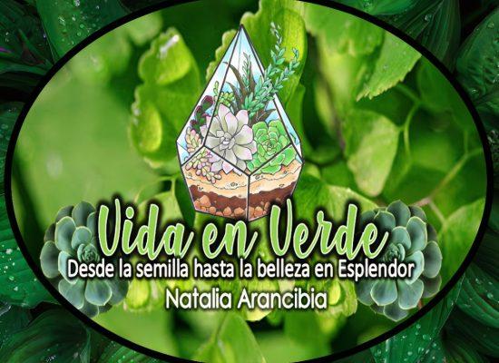 Vida en verde